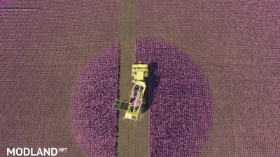 Carrots, onions and cabbage crops v 1.7, 6 photo