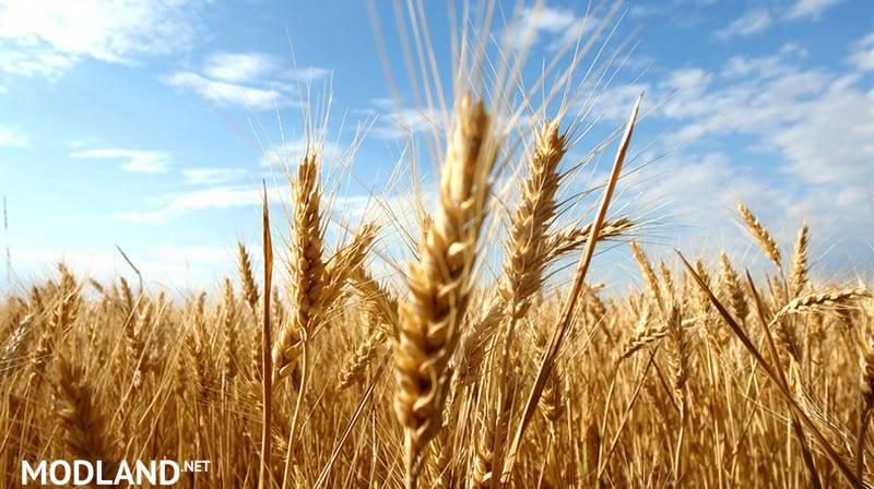 More yield Mehr Ertrag v 1.0 FS19