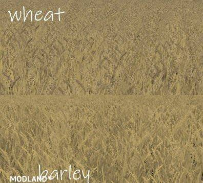 WHEAT - BARLEY TEXTURE