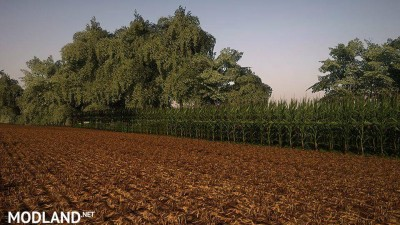 Corn and Soybean textures v 1.0