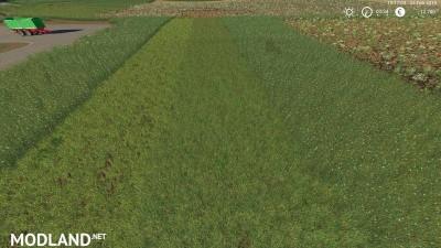 Grass Texture v 1.0