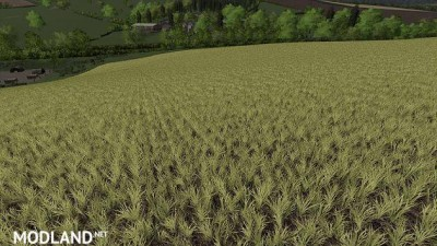 Realistic Cereal and Canola Crop Densities v 1.0, 2 photo