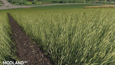 Realistic Cereal and Canola Crop Densities v 1.0, 4 photo