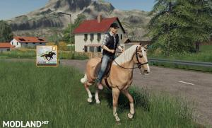 FS 19 Horse Helper
