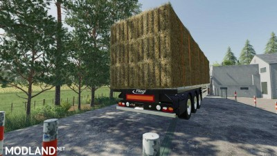 Fliegl Flatbed Semitrailer v 1.1, 5 photo
