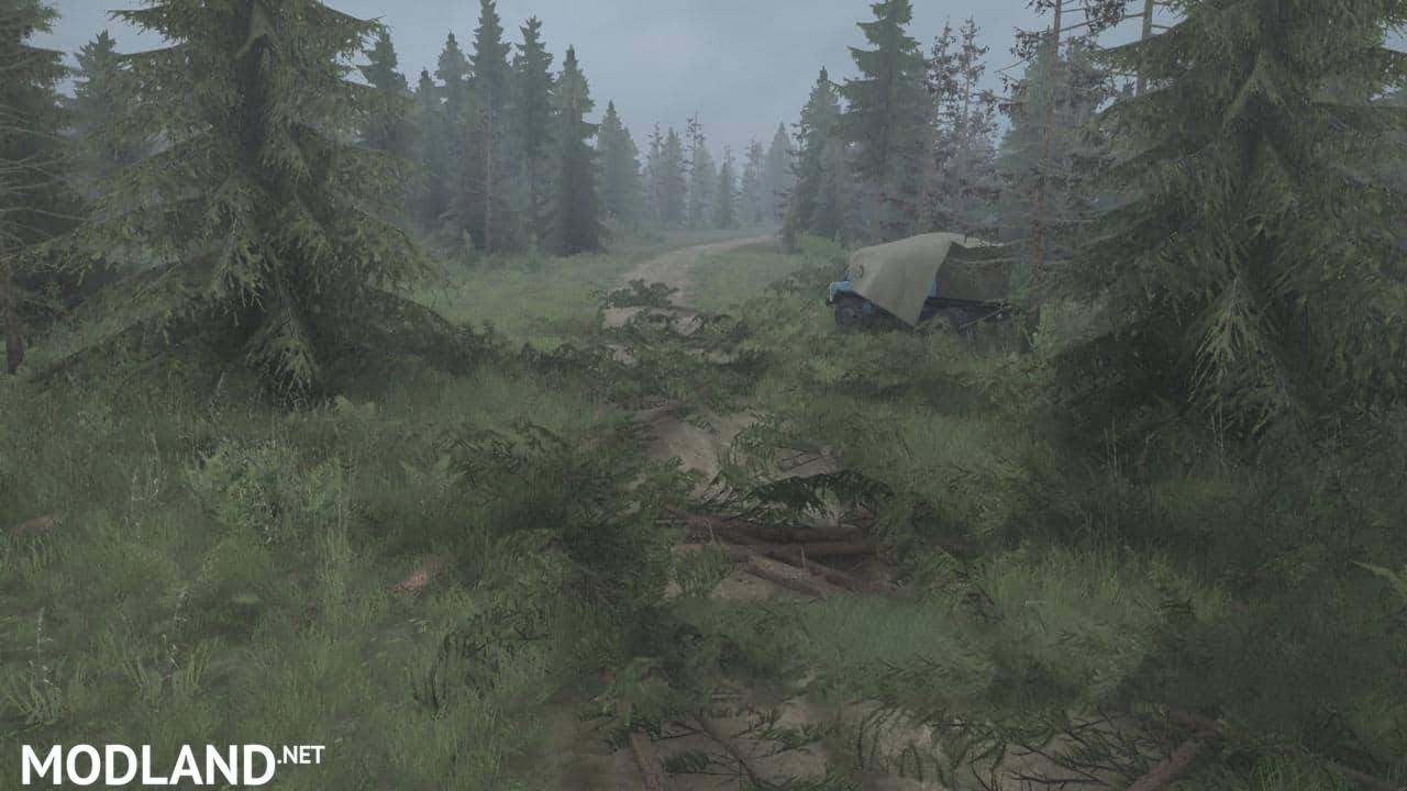 Taiga Forest Map