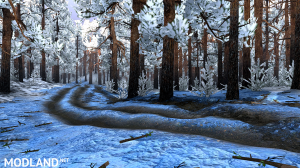 Map «Winter in the taiga» v 1.0, 4 photo